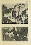 Tafel 13