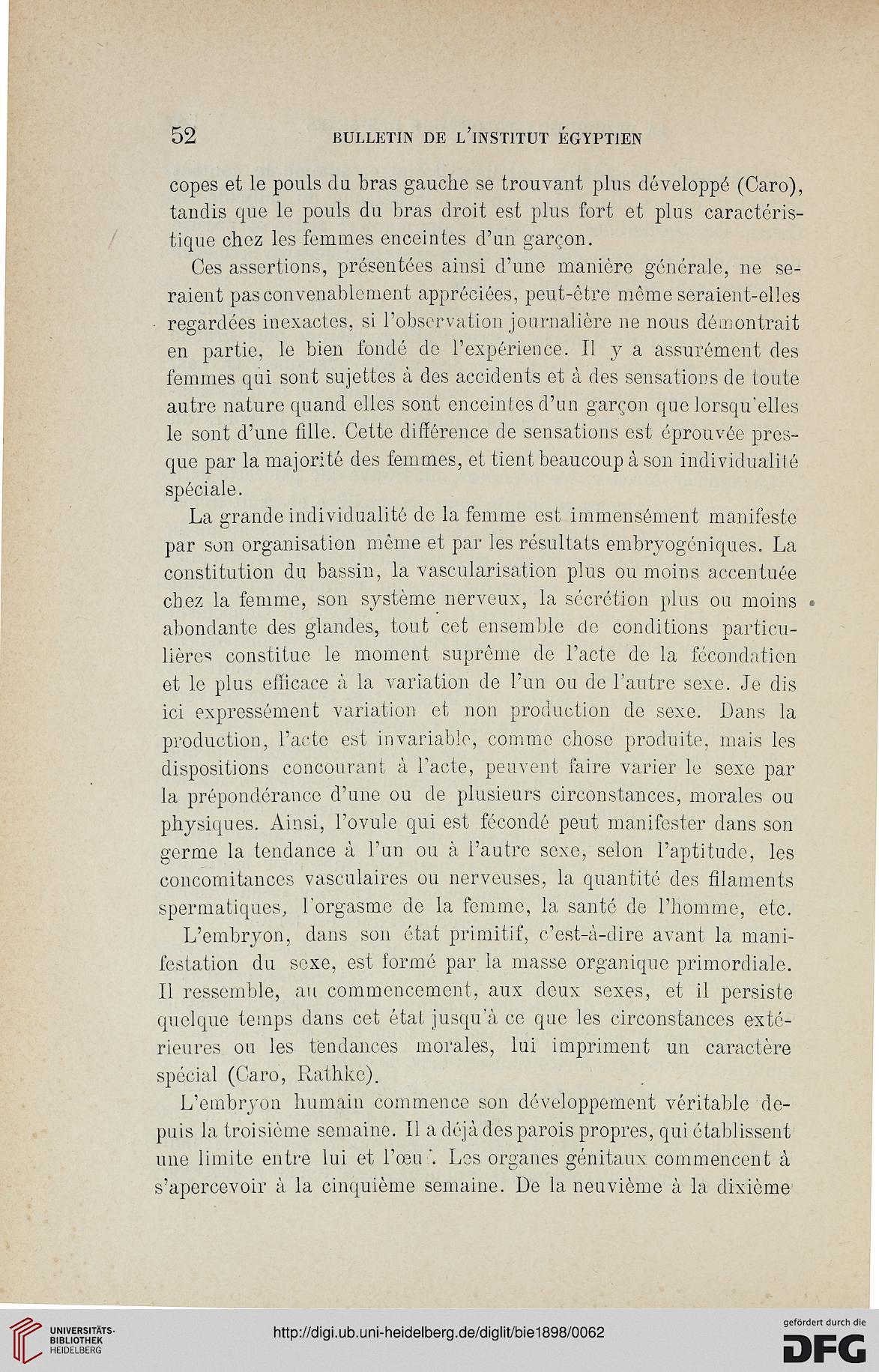 Pendentif Mystères Celtes Bouclier de Fianna Fabrication Française