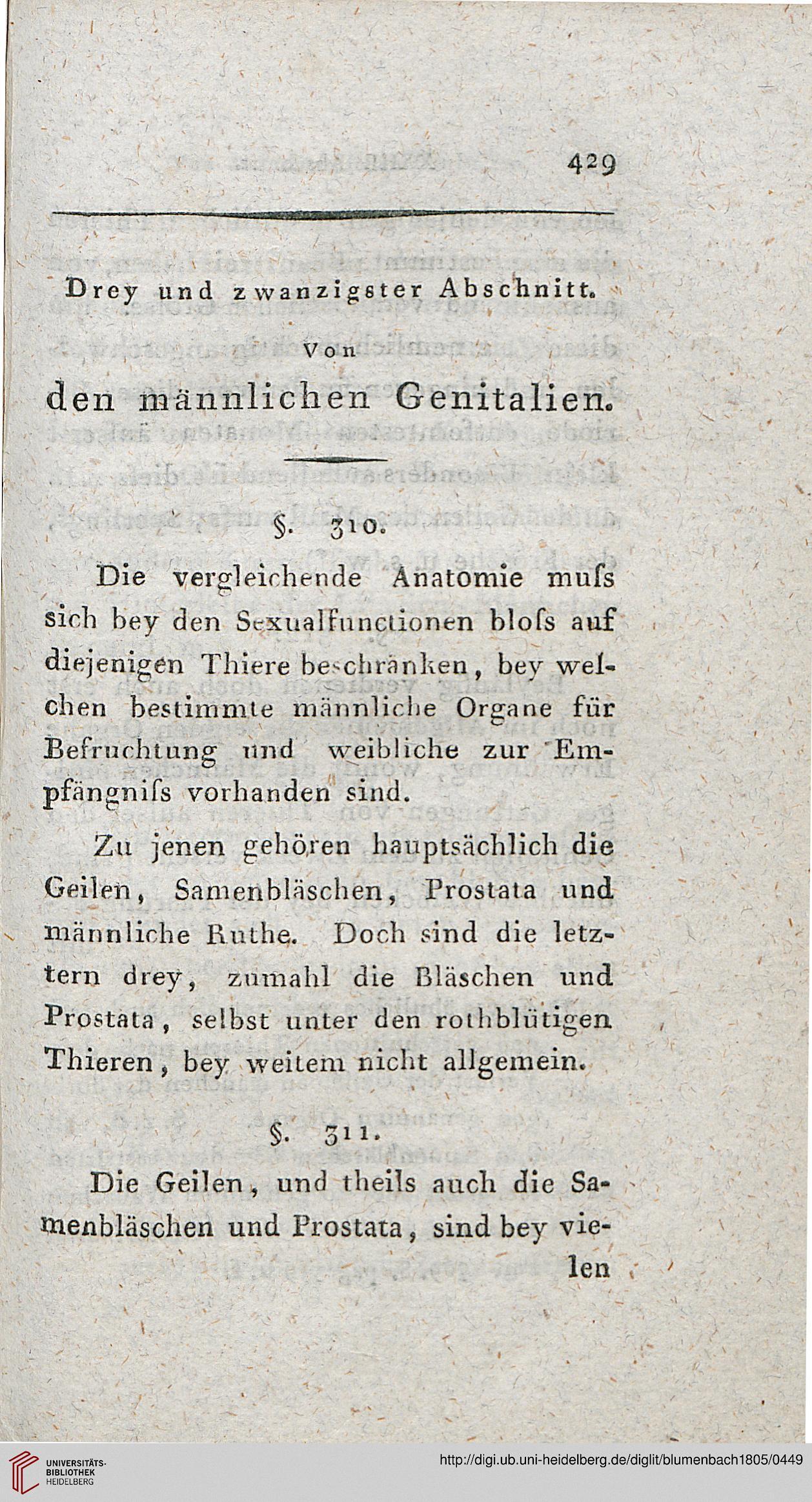Blumenbach, Johann Friedrich: Handbuch der vergleichenden Anatomie ...