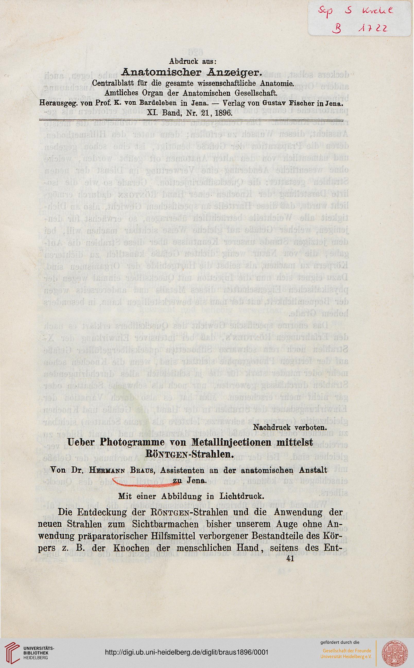 Ausgezeichnet Die Entdeckt Anatomie Galerie - Anatomie Ideen ...