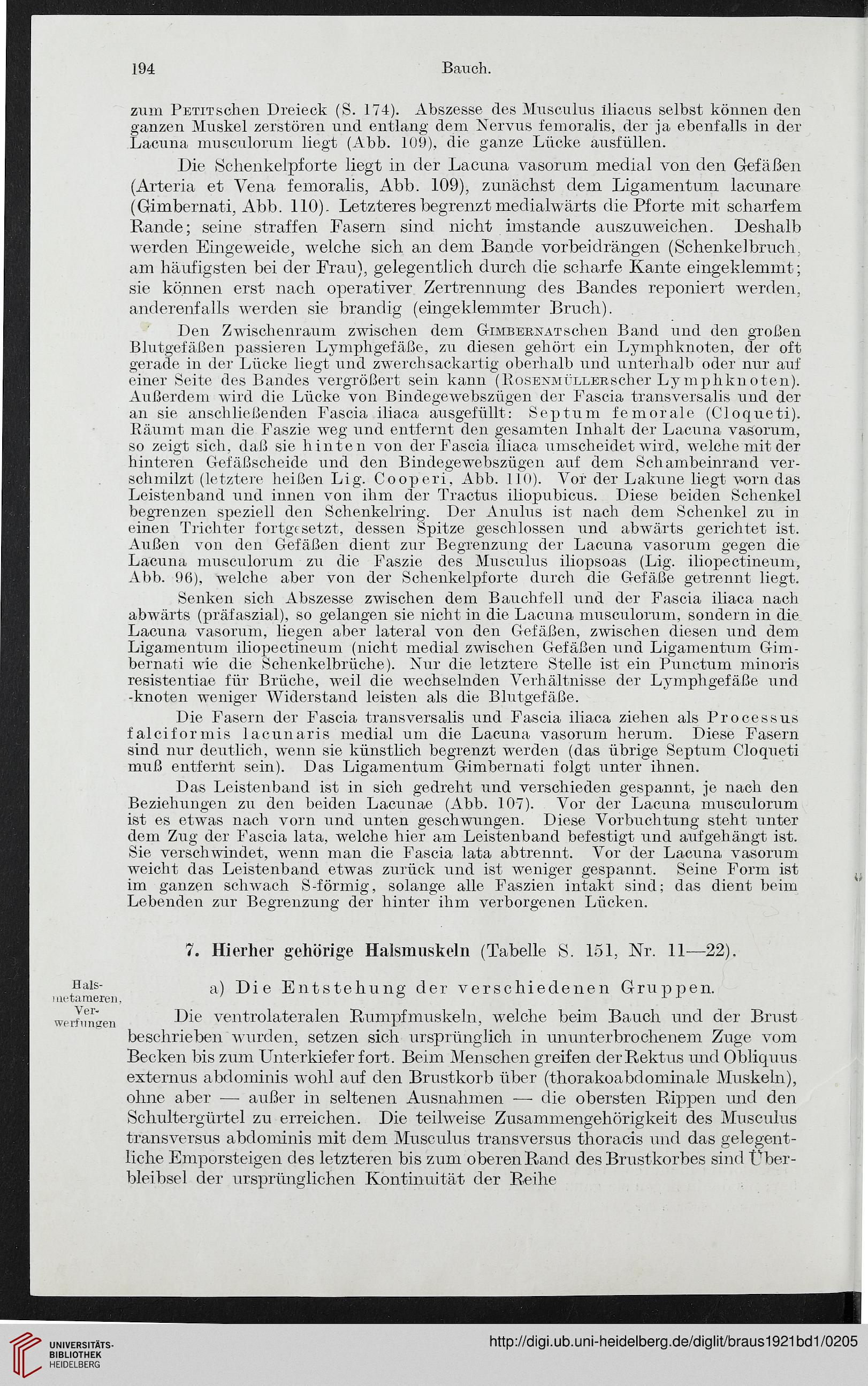 Beste Anatomie Des Gefäßpflanzen Bilder - Anatomie Ideen - finotti.info