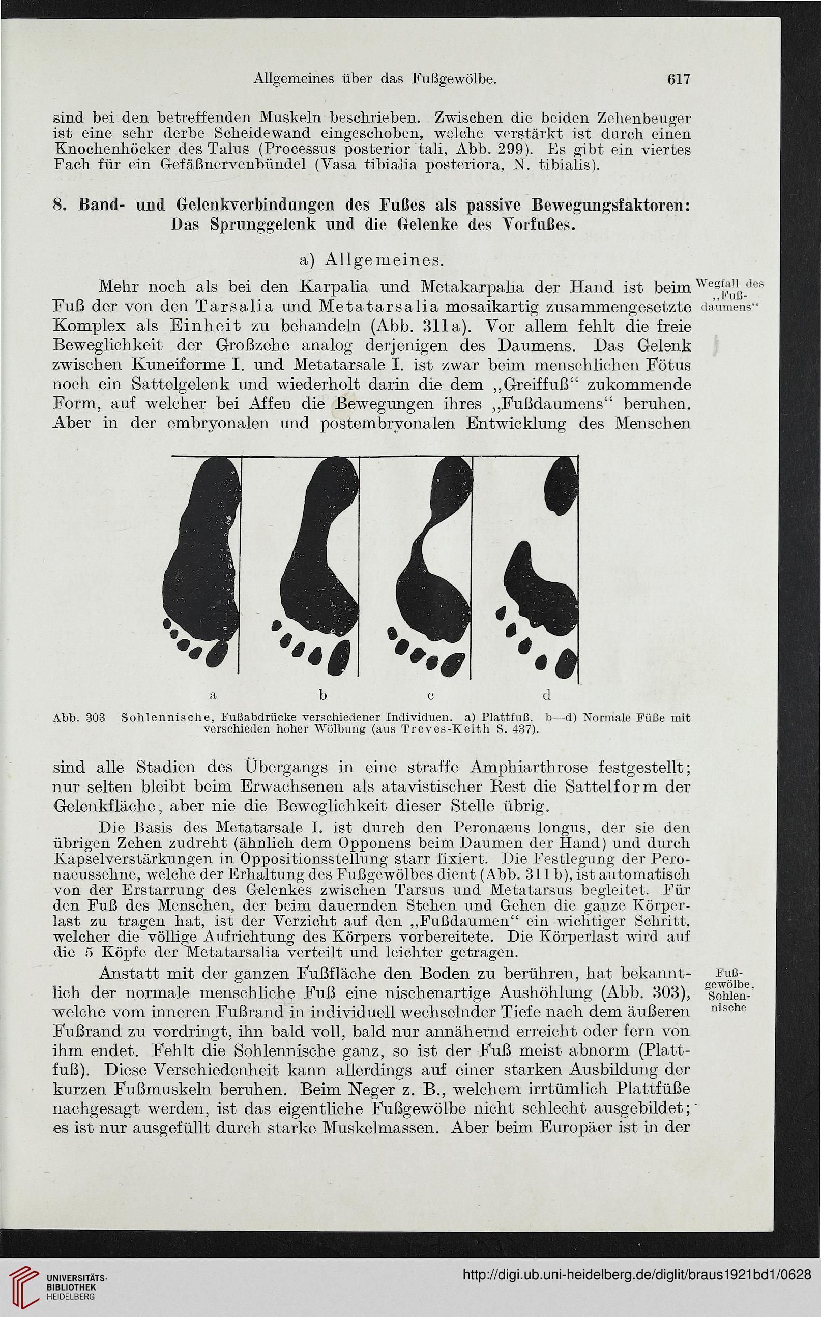 Tolle Knie Fächer Anatomie Galerie - Anatomie Ideen - finotti.info