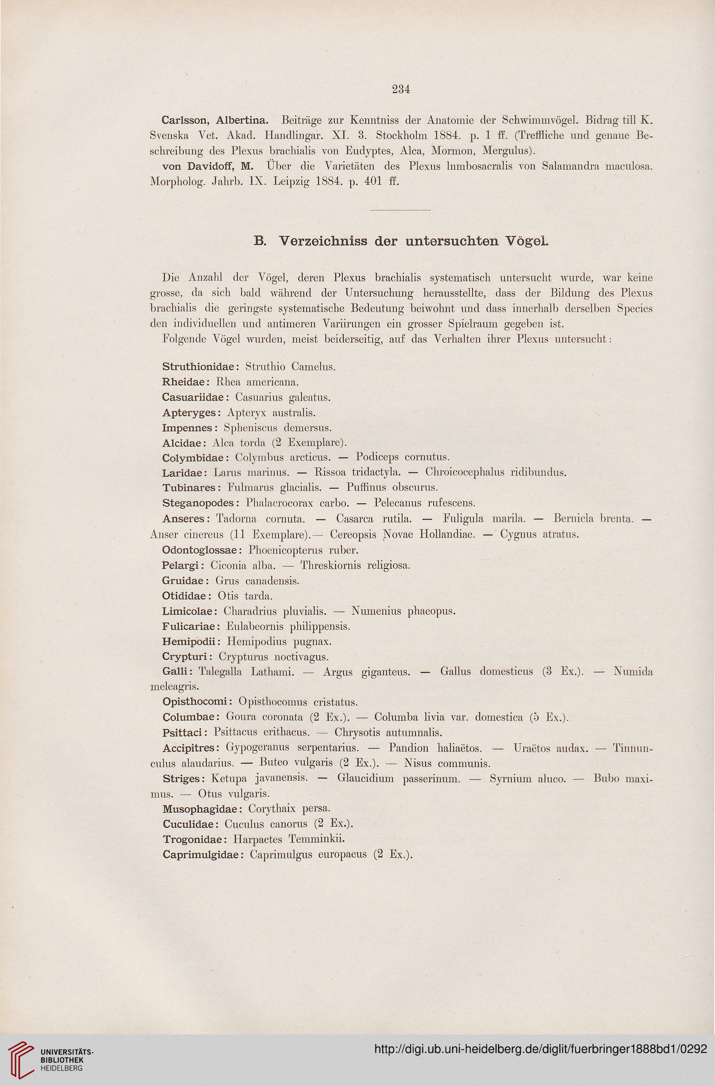Fürbringer, Max: Untersuchungen zur Morphologie und Systematik der ...
