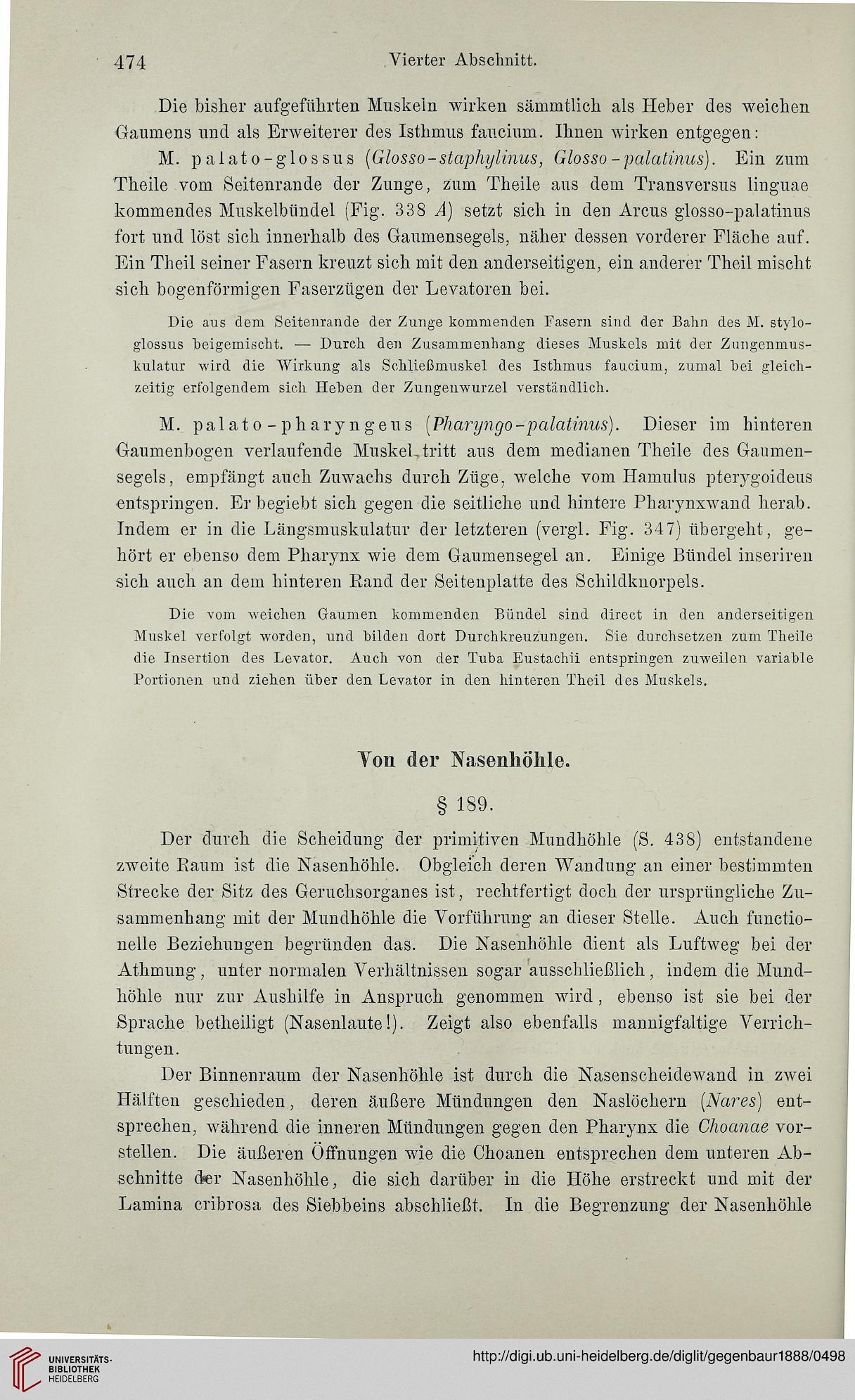 Gegenbaur, Carl: Lehrbuch der Anatomie des Menschen (Leipzig, 1888)