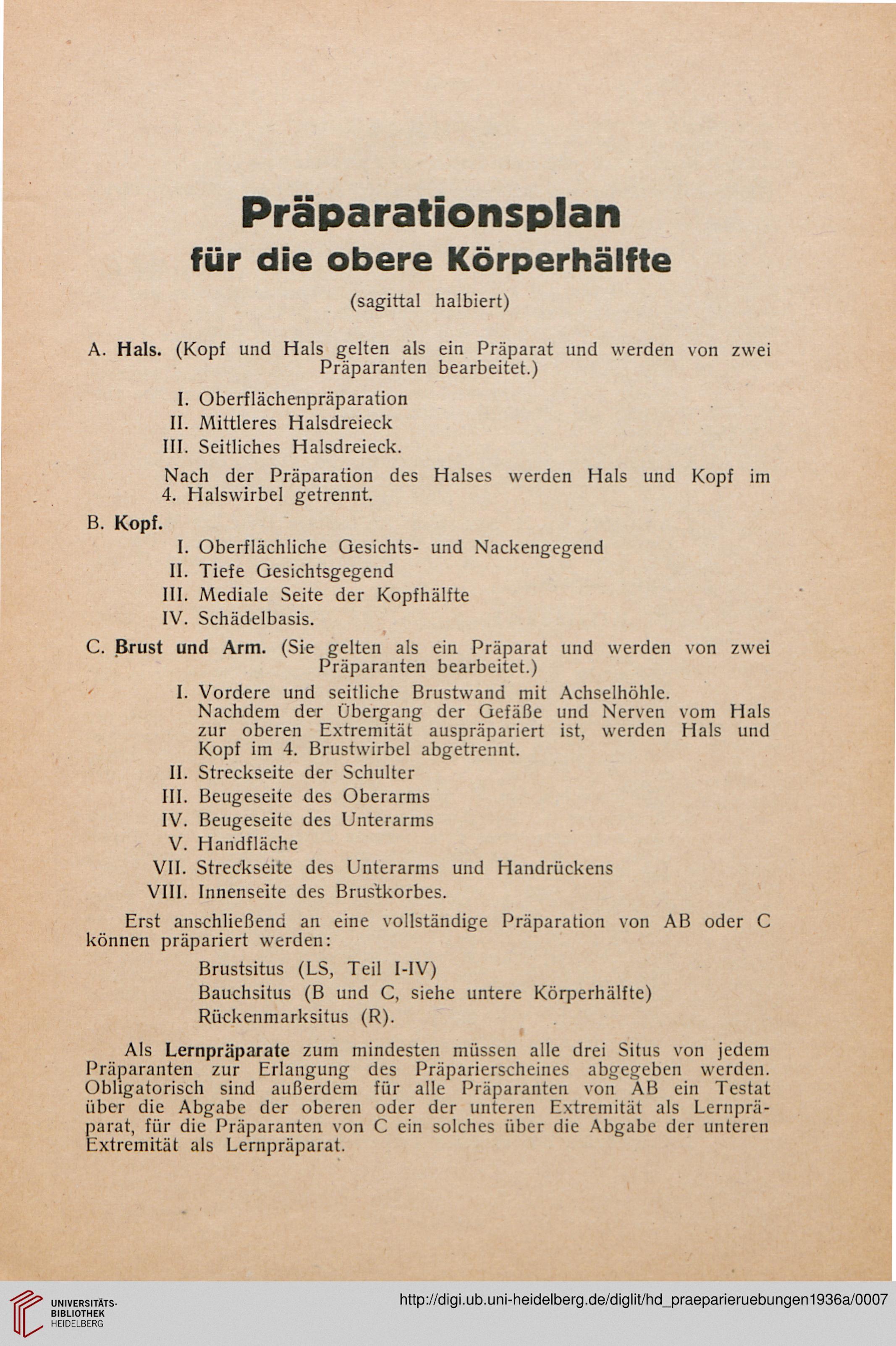 Groß Handvenenanatomie Galerie - Physiologie Von Menschlichen ...