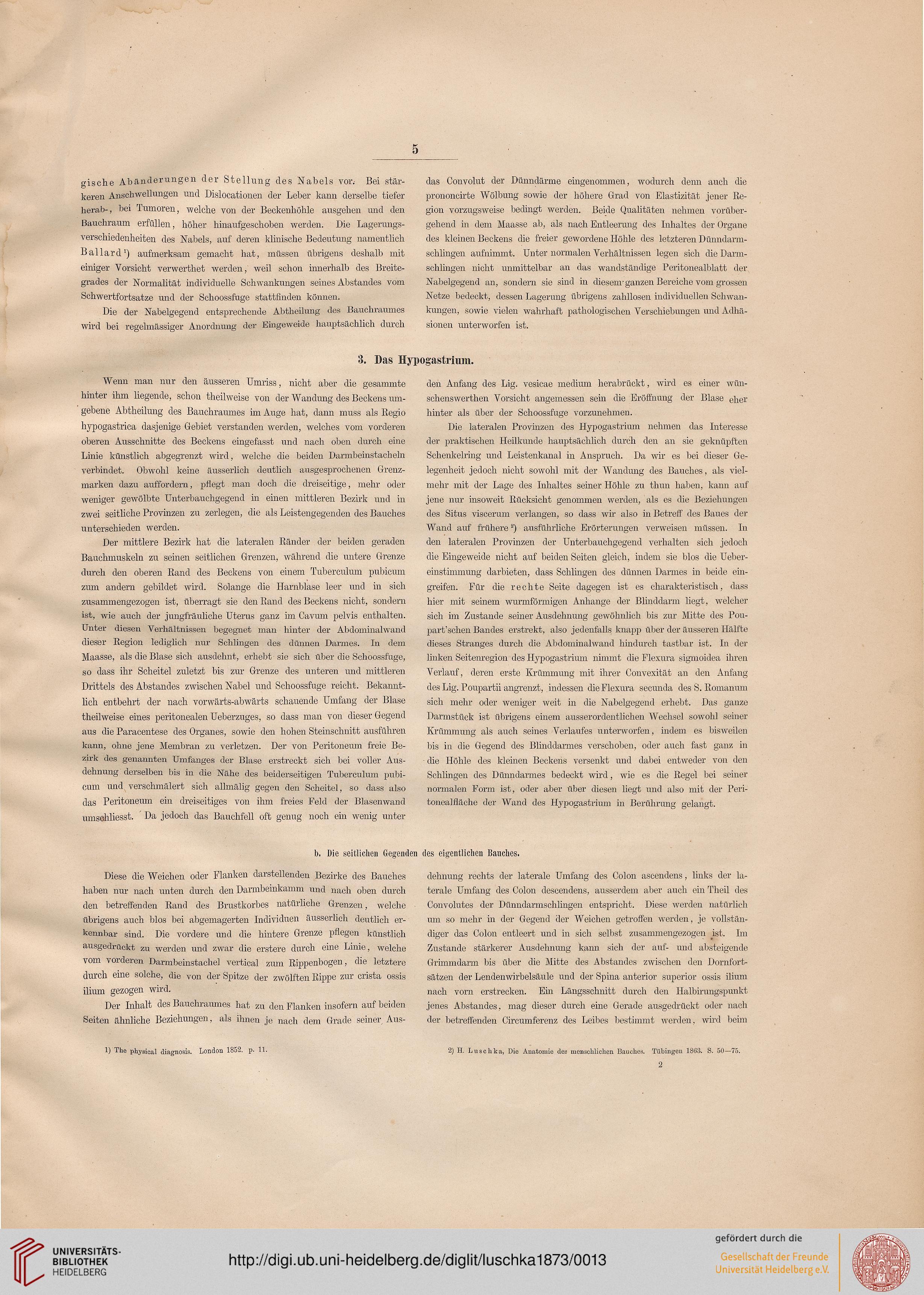 Niedlich Bild Des Menschlichen Bauches Zeitgenössisch - Anatomie ...