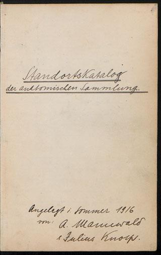 Universität Heidelberg, Institut für Anatomie und Zellbiologie Braus ...